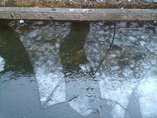 2012_0129_2.jpg