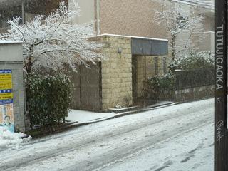 2012_0229.jpg